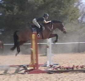 Hobie clearing a big jump
