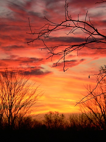 Late fall sunset in Bardstown, Kentucky - November 25, 2006
