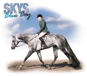 Skys Blue Boy